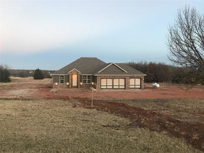 Blanchard Single Family Home For Sale: 1510 Four Lakes Drive
