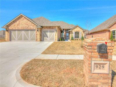Oklahoma City Single Family Home For Sale: 929 SW 141