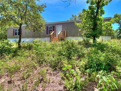 Norman Single Family Home For Sale: 17500 E Cedar Lane