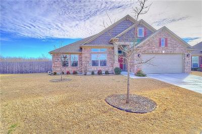 Oklahoma City Single Family Home For Sale: 14212 Paddle Wheel Place