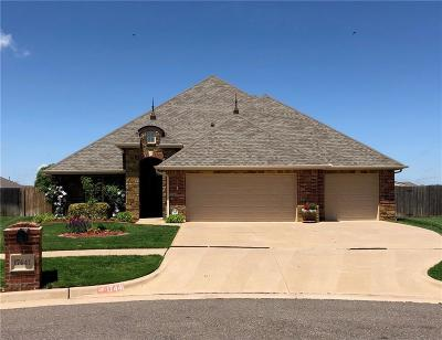 Edmond Single Family Home For Sale: 17441 Hawks Tree