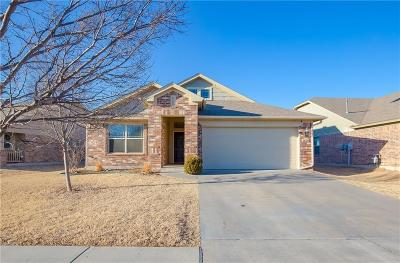 Oklahoma City Single Family Home For Sale: 16117 Raindust Drive