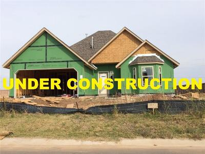 Oklahoma City Single Family Home For Sale: 3508 Lakeside Drive