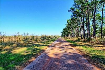Blanchard Residential Lots & Land For Sale: 220th