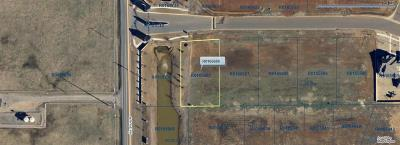 Norman Residential Lots & Land For Sale: 4708 Fountain View