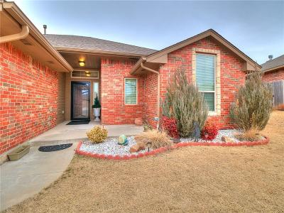 Norman Single Family Home For Sale: 509 Cooper Court