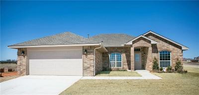 Norman Single Family Home For Sale: 3809 Abingdon Drive