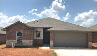 Norman Single Family Home For Sale: 3910 Wiltshire Drive