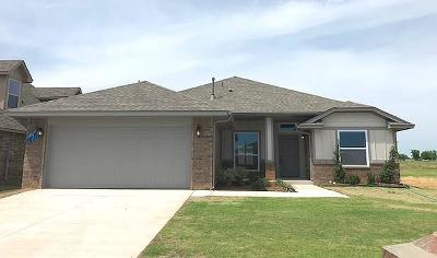Norman Single Family Home For Sale: 3921 Colefax Lane