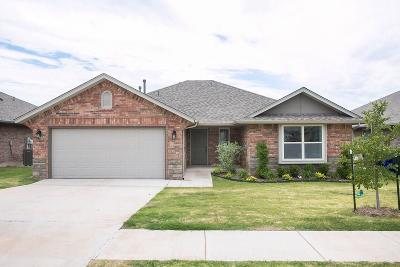 Norman Single Family Home For Sale: 520 Talon Drive