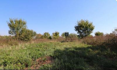Purcell Residential Lots & Land For Sale: 180th
