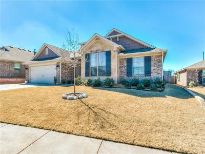 Norman Single Family Home For Sale: 3916 Painted Bird Lane
