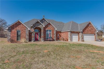 Oklahoma City Single Family Home For Sale: 13201 S Anderson