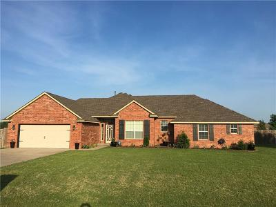 Norman Single Family Home For Sale: 3638 Remington Place Road