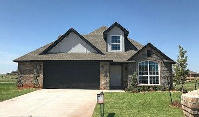 Norman Single Family Home For Sale: 3821 Waterbrook Drive