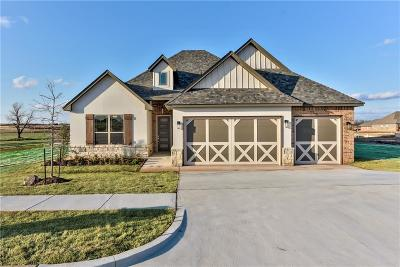 Norman Single Family Home For Sale: 613 Timberbrook Drive