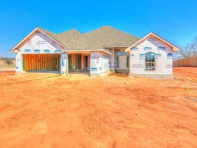 Oklahoma City Single Family Home For Sale: 7000 Ridge Manor Lane
