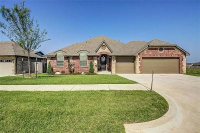 Norman Single Family Home For Sale: 3024 Terrace Park Trl