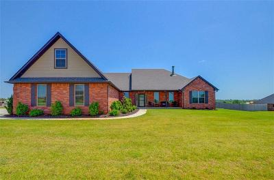 Blanchard OK Single Family Home For Sale: $264,900