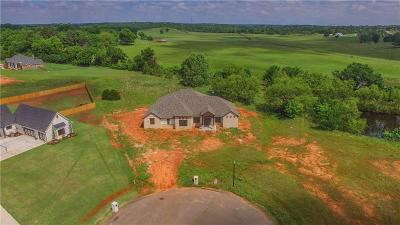 Choctaw Single Family Home For Sale: 9801 Lindsey Circle