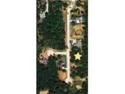 Residential Lots & Land For Sale: Old Iron Lot 05