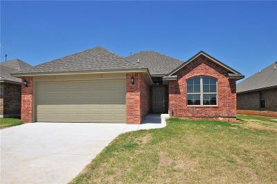 Oklahoma City Single Family Home For Sale: 12013 Chisholm Village Drive