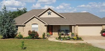 Blanchard Single Family Home For Sale: 1395 County Street 2981