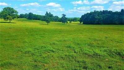Norman Farm & Ranch For Sale: 3810 113th Avenue