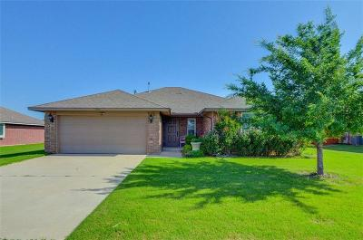 Norman Single Family Home For Sale: 1005 Falco Concolor Dr. Drive