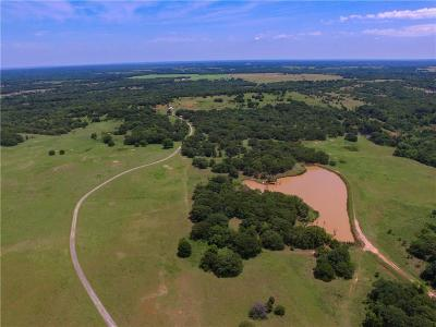 Carney, Chandler, Davenport, Luther, Meeker, Prague, Sparks, Stroud, Tryon, Arcadia, Edmond, Guthrie, Oklahoma City Farm & Ranch For Sale: 940778 S Hwy 99 Highway