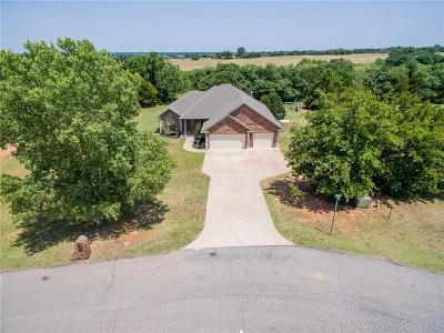 Blanchard OK Single Family Home For Sale: $245,000