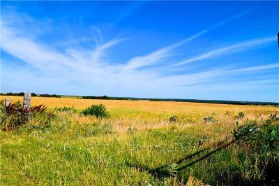 Farm & Ranch For Sale: Hwy 33 West Of May Ave