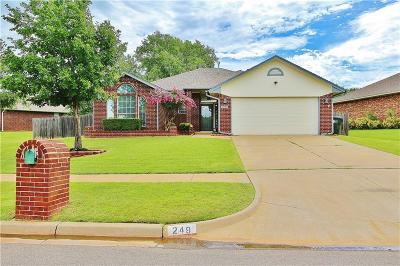 Norman Single Family Home For Sale: 249 Waterfront Drive