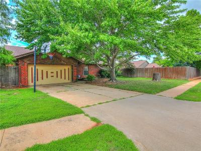 Norman Single Family Home For Sale: 306 Teresa Drive