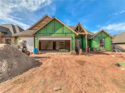 Oklahoma City Single Family Home For Sale: 4001 Cedar Pass Drive