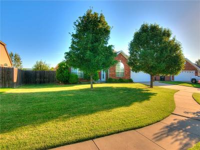Norman Single Family Home For Sale: 3801 Warrington Way