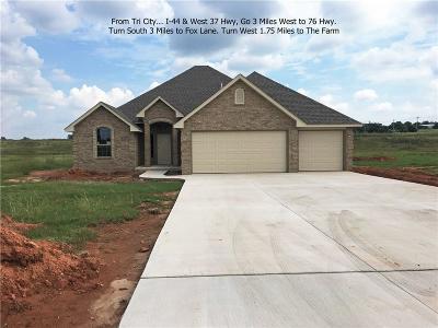Blanchard OK Single Family Home For Sale: $250,000