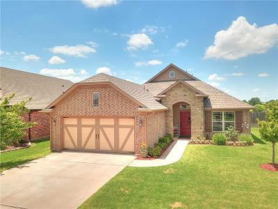 Norman Single Family Home For Sale: 3516 Mount Mitchell Lane