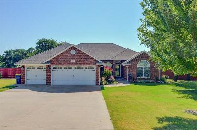 Choctaw Single Family Home For Sale: 274 Murray Drive