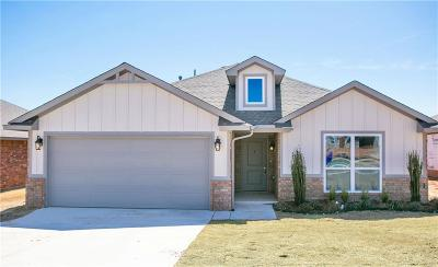 Norman Single Family Home For Sale: 3914 Wiltshire Drive
