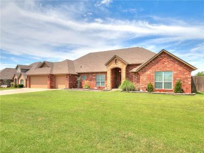 Edmond Single Family Home For Sale: 1029 Skyline Boulevard