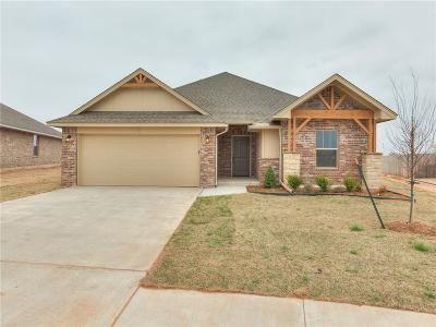 Oklahoma City Single Family Home For Sale: 8701 SW 38th Street