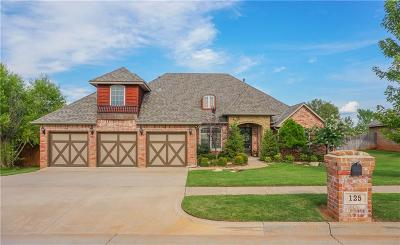 Norman Single Family Home For Sale: 125 Horizon View Court