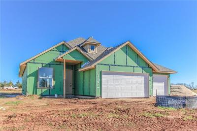 Norman Single Family Home For Sale: 1307 Peddle Pond Drive