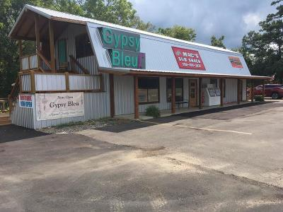 Commercial For Sale: 242 Stevens Gap
