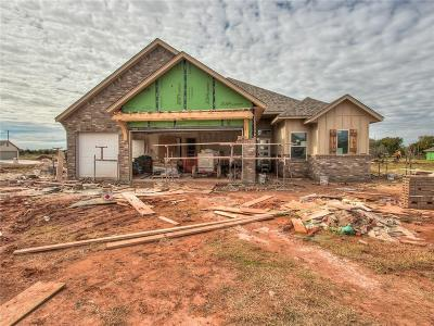 Norman Single Family Home For Sale: 1312 Stone Creek Drive