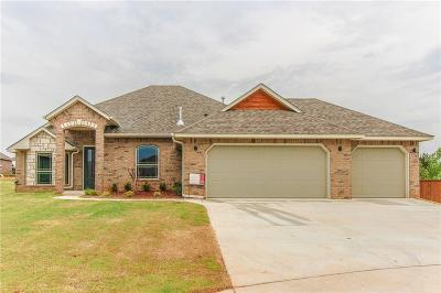 Norman Single Family Home For Sale: 2006 Allora Court