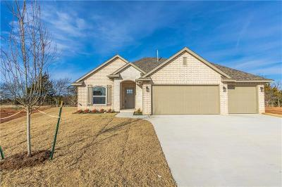 Norman Single Family Home For Sale: 1322 Pebble Pond
