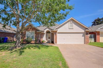 Norman Single Family Home For Sale: 205 Midway Drive