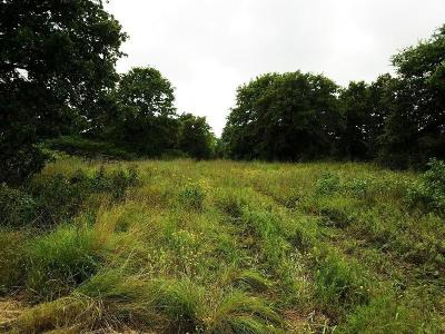 Blanchard Residential Lots & Land For Sale: Scissortail Ln (Quailhaven 10a)